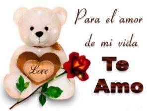 Feliz día del Amor Te Amo