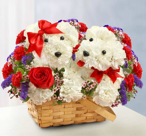 Arreglos Florales Rosas Cumpleaños Feliz A Ti